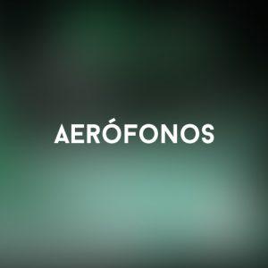Aerófonos